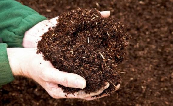 Kỹ thuật ủ phân hữu cơ từ phụ phẩm trồng trọt và chất thải chăn nuôi bằng chế phẩm vi sinh vật