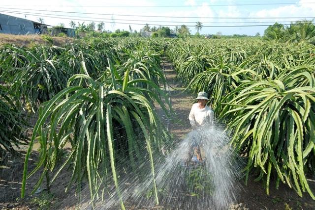 Cải tạo đất nhiễm phèn và độ pH trên cây trồng