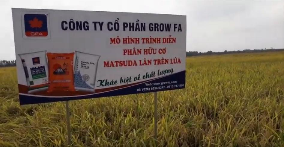 Phân hữu cơ MATSUDA lân trên lúa